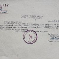 Referat Sreskog plenarnog odbora AFŽa.pdf