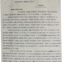 Izvještaj o radu AFŽ BiH.pdf