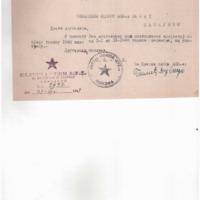 SO AFŽa Bijeljina_izvještaj za 1948.godinu_21.12.1948..pdf