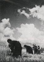 74-F.jpg